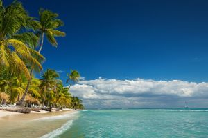 landscape beach summer palm trees vacation clouds nature tropical island sea