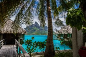 landscape beach summer sea palm trees island mountains resort vacation nature bora bora tropical