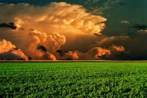 landscape clouds field