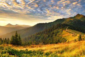 landscape clouds hills sunrise pine trees mountains