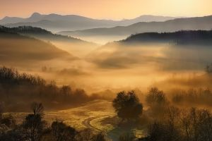 landscape mist mountains greece nature trees forest