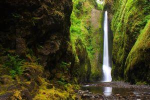 landscape nature creeks waterfall rocks moss