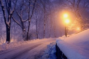 landscape nature trees lantern winter lights cold park road snow