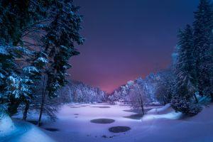 landscape path park snow nature night blue violet ice winter frozen lake forest trees lake pond
