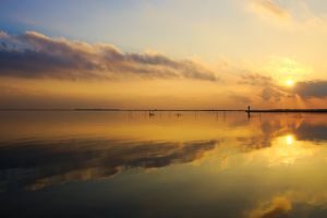 landscape reflection water