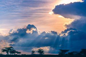 landscape savannah blue africa clouds trees nature space sun rays sunset sky