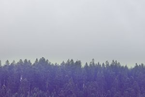 landscape sky mountains muted nature trees italy europe