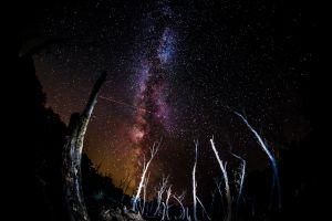 landscape stars night sky