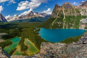 landscape summer mountains canada lake o'hara green forest water clouds british columbia turquoise nature