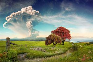 landscape trees eruption wildflowers grass lake chile field creeks calbuco volcano nature