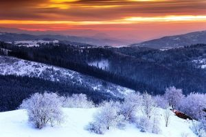 landscape valley winter snow mist sky clouds trees nature mountains shrubs
