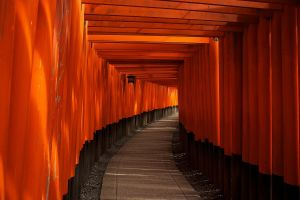 lantern torii red kyoto wood path temple orange gravel pavements building japan