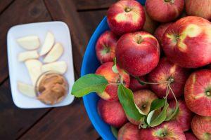 leaves food apples fruit lunch