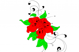 leaves red nature green life flowers sketches white