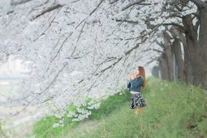 looking away skirt cherry blossom standing jean jacket redhead trees nature women outdoors asian women