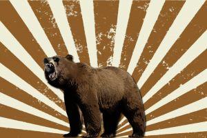 mammals digital art bears artwork sun rays animals
