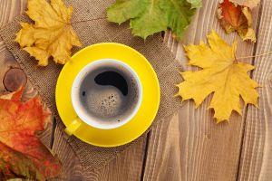 maple leaves fall mugs coffee table