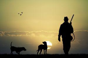 men gun rifles dog hunting sun