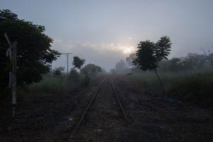 metal rust railway old plants
