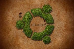 mint ubuntu gnu linux