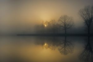 mist nature landscape