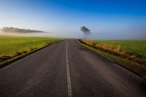 mist nature morning road landscape