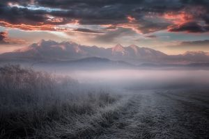 mist shrubs sky clouds frost nature dry grass cold mountains landscape