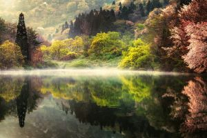 mist spring morning lake forest trees water landscape south korea reflection mountains nature