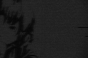 monochrome typography lain iwakura black serial experiments lain text