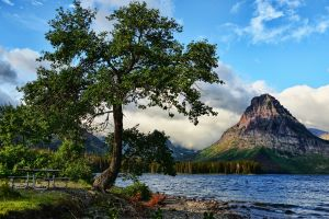 montana landscape bench lake sky mountains clouds glacier national park water nature trees forest cyan waves hills