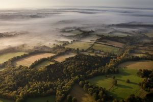 morning landscape field mist nature green forest aerial view