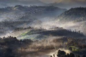 morning mist hills nature trees landscape village