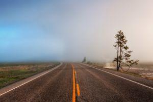 morning nature road mist