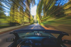 motion blur driving forest