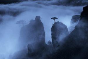 mountains blue nature dark mist landscape night shrubs rock trees