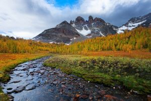 mountains fall landscape creeks pine trees