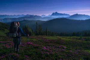 mountains spring wildflowers snowy peak landscape stars backpacks nature forest washington state mist hiking