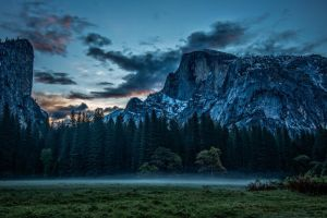 mountains trees forest nature sunset mist pine trees landscape