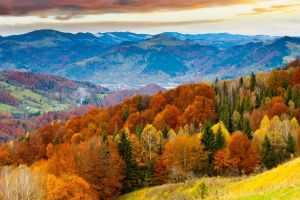 mountains trees leaves valley hills sky landscape fall colorful nature clouds forest