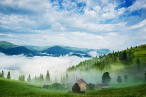 mountains valley pine trees forest trees morning haystacks landscape nature mist clouds hills grass house field