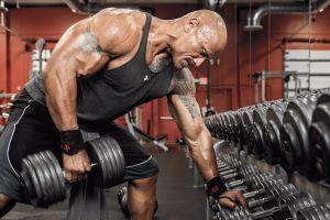 muscles celebrity dwayne johnson men