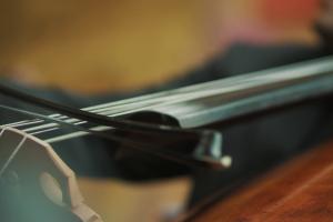 music tomorrowland musical instrument musical instrument