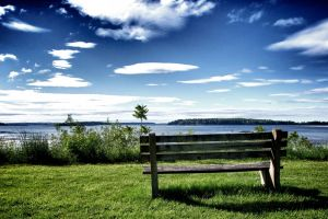 nature bench clouds grass