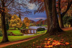 nature bridge landscape trees
