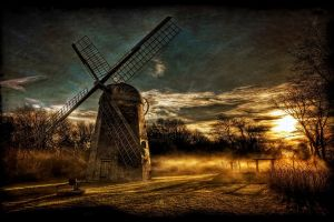 nature hdr trees sunset landscape shrubs sky mist windmill