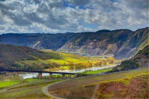 nature hills river vineyard landscape valley