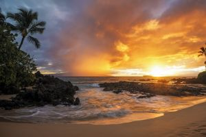 nature landscape gold sunset rock beach sea clouds sand palm trees