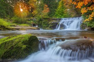 nature landscape trees forest waterfall moss sunset