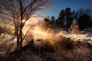 nature mist frost morning snow trees river winter forest cold landscape shrubs