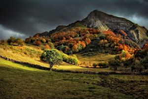 nature mountains clouds grass landscape fall sunlight trees dark